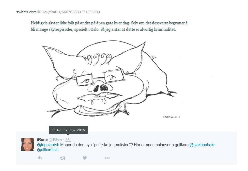 Irene Hov lastet ned og publiserte Kristin Bruuns tegning 17.11.2015. I ettertid påstår Hov at hun har delt Bruuns tweet med tegningen i.