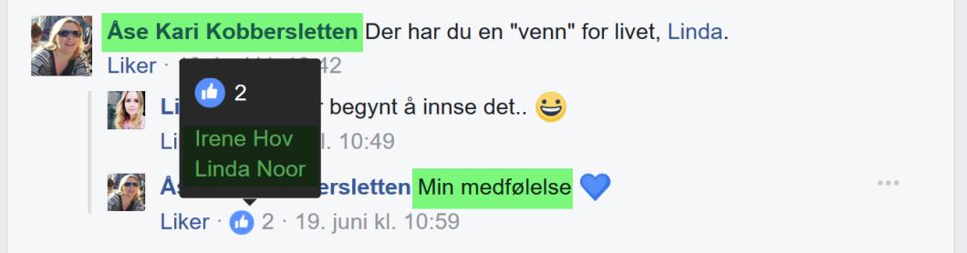 Åse Kari Kobbersletten, Irene Hov og Linda Noor har funnet tonen